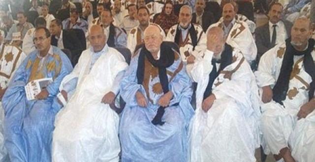 cheikhs sahara
