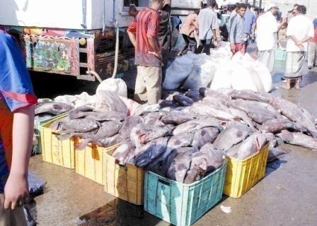 هكذا يباع السمك في شوارع أزمور دون أدنى شروط السلامة و الصحة