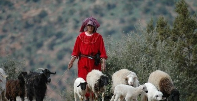 travail femmes maroc