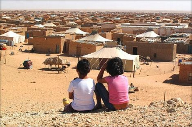 """Photo of تقرير أسود لمنظمة """"أنقذوا الأطفال"""" تجمع أطفال مخيمات البوليساريو وحرب اليمن"""