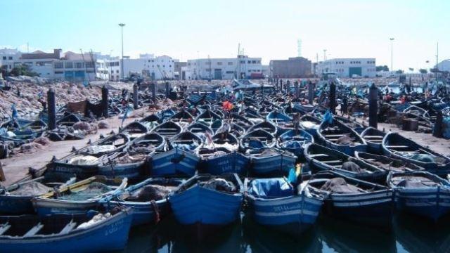 Photo of منوعات   الصويرة تحتضن النسخة الرابعة من سباق قوارب الصيد