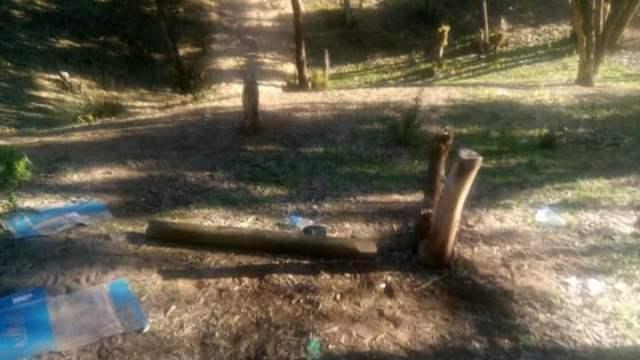 Photo of الصويرة | بعد قطع الأرزاق.. الآن قطع الأشجار!