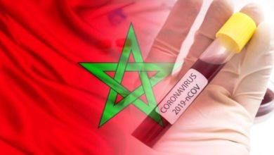 Photo of عاجل   المغرب يسجل 295 حالة إصابة جديدة، وحالة وفاة خلال الـ24 ساعة الأخيرة
