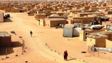 Photo of باحث يحمل الجزائر مسؤولية جمود قضية الصحراء