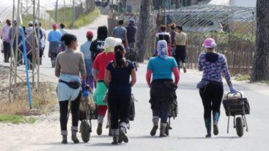 Photo of انطلاق عملية إعادة العاملات الموسميات في إسبانيا إلى أرض الوطن