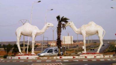Photo of تقارير سوداء وراء إطلاق حركية رجال السلطة في كلميم