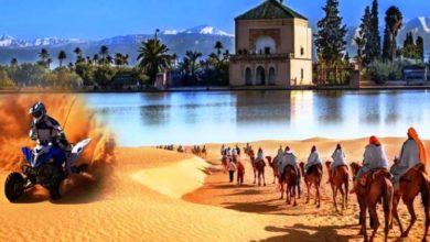 Photo of المنبر الحر | الحاجة إلى سياسة سياحية جديدة