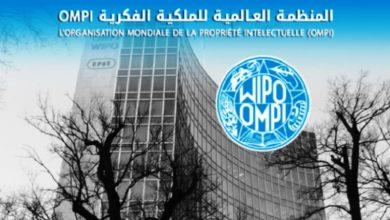 Photo of رئاسة المغرب للمنظمة العالمية للملكية الفكرية تزيد من مراقبة صناعته المحلية