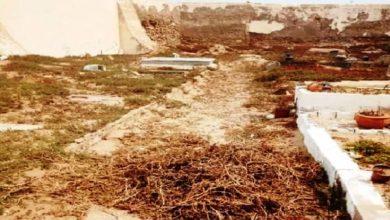 Photo of الوضعية الكارثية للمقابر تفرض البحث عن المسؤول عنها