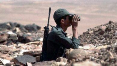 Photo of الجزائر تريد الصحراويين حطبا في حرب